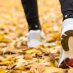 ¿Porqué todo el mundo ama correr en otoño? Aquí la respuesta…