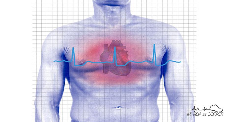 frecuenciacardiaca2