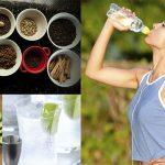 Alimentos y Bebidas para mantenerse hidratados