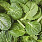 La razones para comer más espinacas diariamente