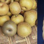 Frutas de invierno que definitivamente deberían de estar comiendo