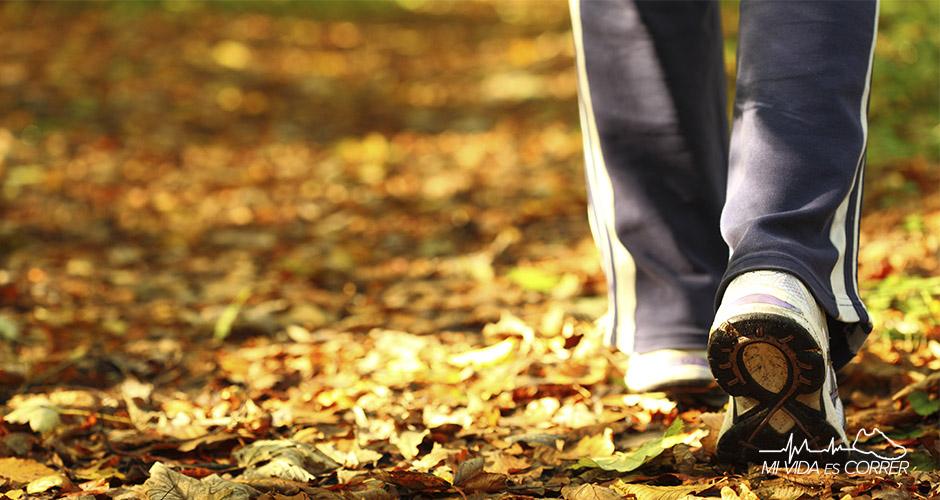 ¿Qué quema más calorías, correr o caminar?
